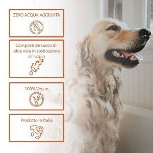 info Pet