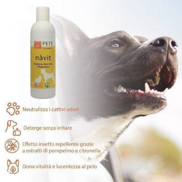 shampoo Navit Aloe