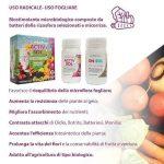 Activ Sol – Biostimolante e Protettivo a Uso Radicale e Fogliare -250 ml