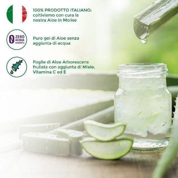 Aloe Puro Gel