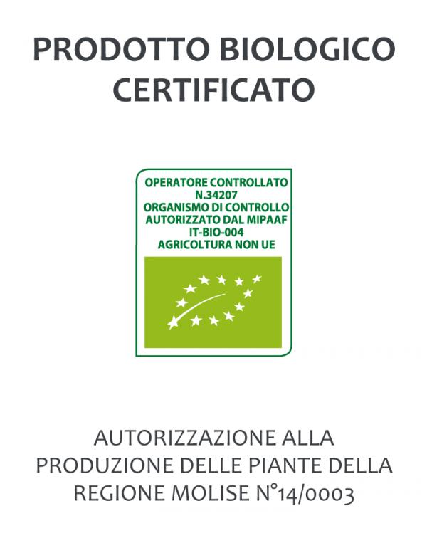 Products Certificati Piante 01 1 600x763