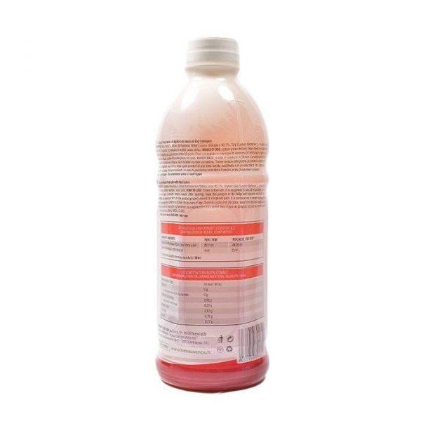 Aloe Goji 2 600x600