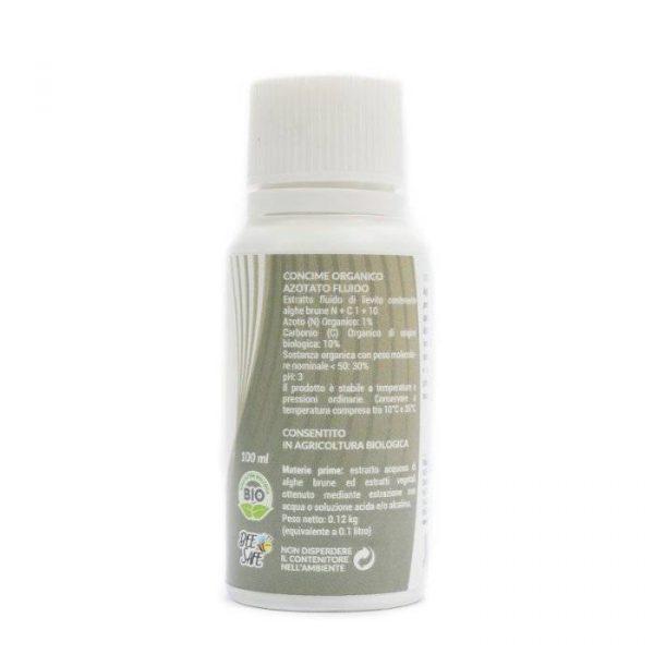 Micorrizie Piante Benessere Protezione 1 600x600