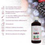 Natural C con Acerola y Rosa Canina, fuentes de Vitamina C- 1 L