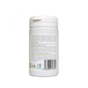 capsule probiotici intestino